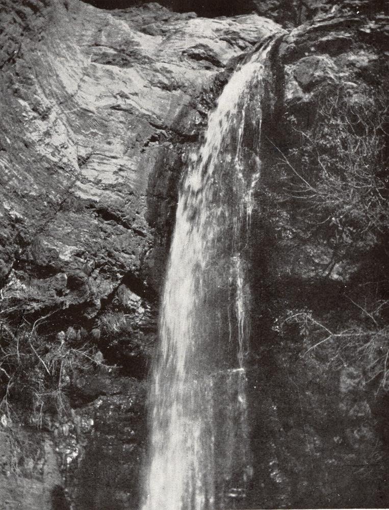 B.246.jpg