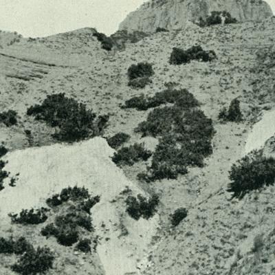 A.64.a.jpg