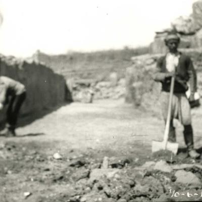 B.184.jpg