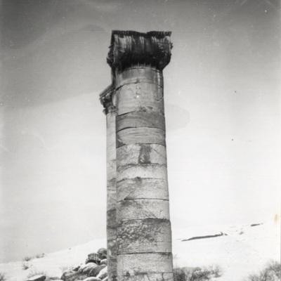 B.228.jpg