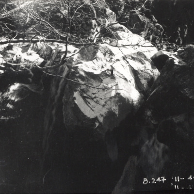 B.247.jpg