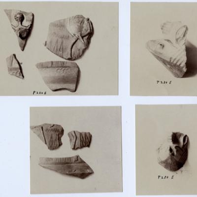 C.3.81-7.jpg