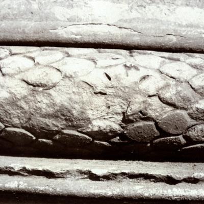 A.318.jpg
